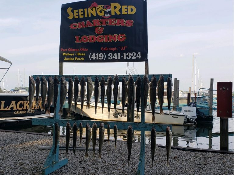 another pic of walleye with banner