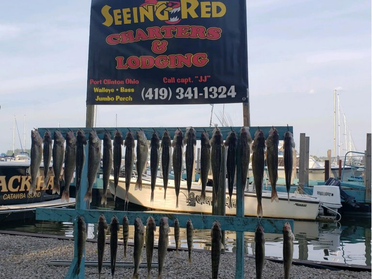 seeing red banner with walleye