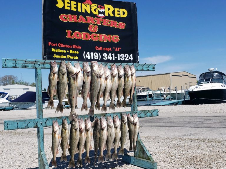 May 2020 Walleye Catch from Lake Erie Ohio