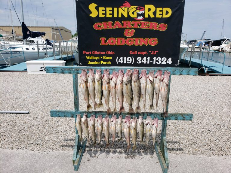 June 26, 2020 Nice Display of Walleye from Charter Fishing Trip