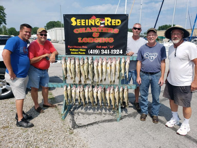 Nice Walleye Catch of 5 in Charter